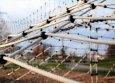 Kletternetz aus Herkulesseil nach Maß (per m²) | Schutznetze24
