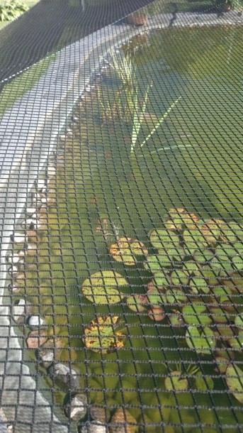Teichabdecknetz gegen Laub | Schutznetze24