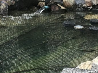 Pond Net against leaves, Custom-Made | Safetynet365