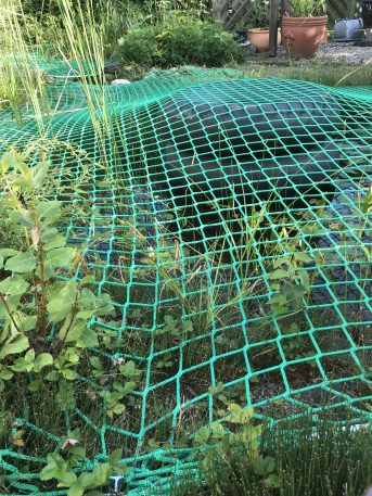 Pond Cover Net (Fall Safety Net), Made to Measure | Safetynet365