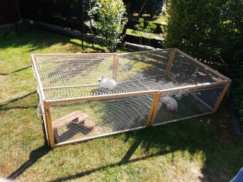 Bird Protection Net with Border, by the m² (Custom-Made) | Safetynet365