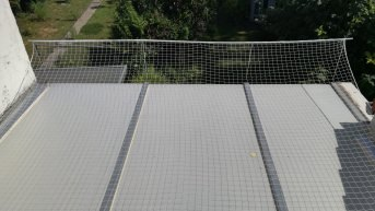 Pigeon Protection Net, by the m² (Custom-Made) | Safetynet365
